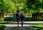 May 13, 2021: Unbridled Honor exercises for the Preakness Stakes at Pimlico Race Course in Baltimore, Maryland. Scott Serio/Eclipse Sportswire/CSM