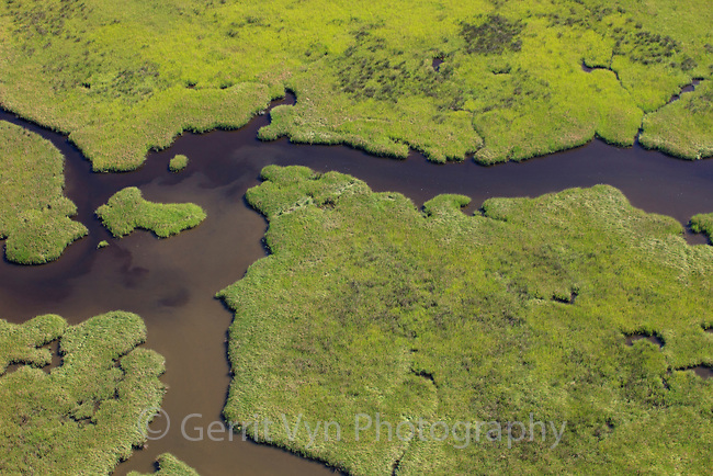 Aerial view of salt marsh in the Baratari Bay area of the Mississippi River delta. Plaquemines Parish, Louisiana. July 2010.