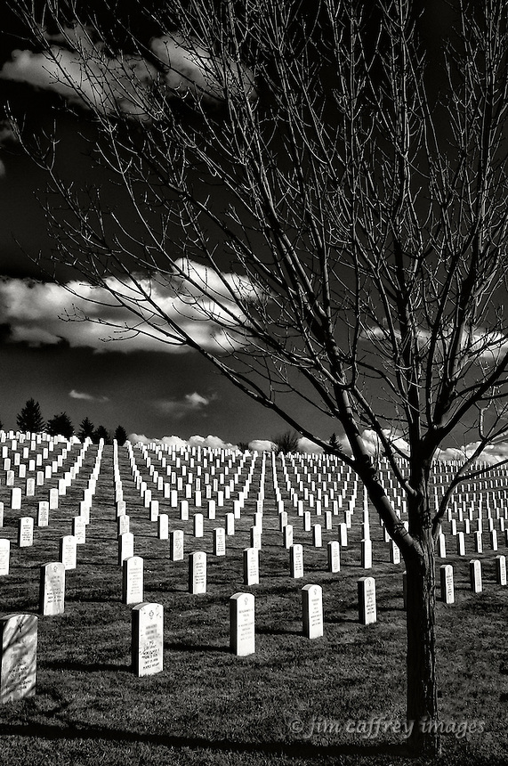 A winter-bare tree in front of headstones at the National Cemetery in Santa Fe, New Mexico.