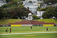 201220 Joy Lamason Trophy Cricket - Wellington Collegians v Upper Hutt
