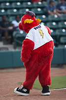 Winston-Salem Rayados mascot Bolt prior to the game against the Llamas de Hickory at Truist Stadium on July 6, 2021 in Winston-Salem, North Carolina. (Brian Westerholt/Four Seam Images)