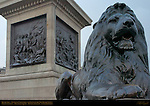 Bronze Lion, Nelson's Column, Battle of Copenhagen and Battle of the Nile Bronze Reliefs, Trafalgar Square, London, England, UK
