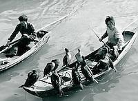 Kormoran-Fischen in Yixing, China 1989