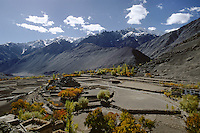 TERRACED FALLOW FIELDS and APRICOT TREES spread out over a RIVER VALLEY near ALCHI - LADAKH, INDIA.