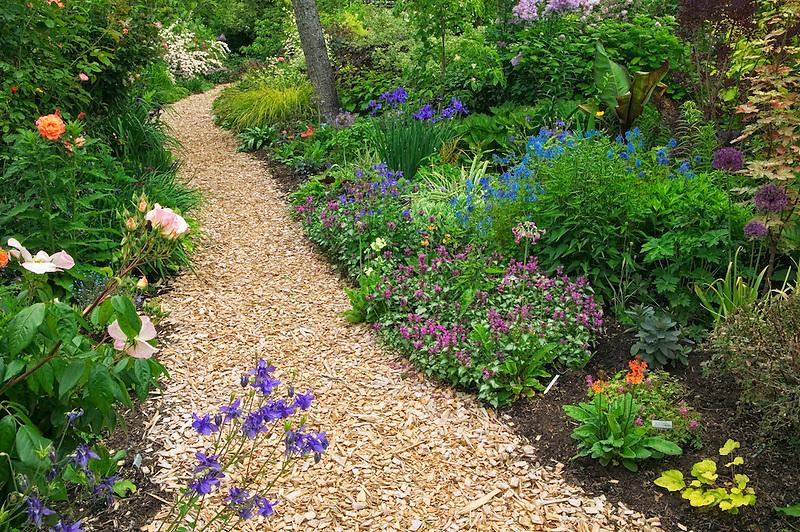 Wood chip path at Northwest Garden Nursery, Eugene, Oregon