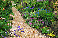 Wood chip path at Northwest Garden Nursery, Eugene, Oregon
