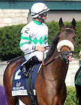 April 18, 2014 Moment In Dixie and jockey Jose Lezcano in the post parade of the G3 Doubledogdare Stakes at Keeneland