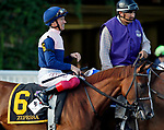 ARLINGTON HEIGHTS, IL - AUGUST 12: Zipessa #6, ridden by Lanfranco Dettori, during the post parade before the Beverly D. Stakes on Arlington Million Day at Arlington Park on August 12, 2017 in Arlington Heights, Illinois. (Photo by Jon Durr/Eclipse Sportswire/Getty Images)