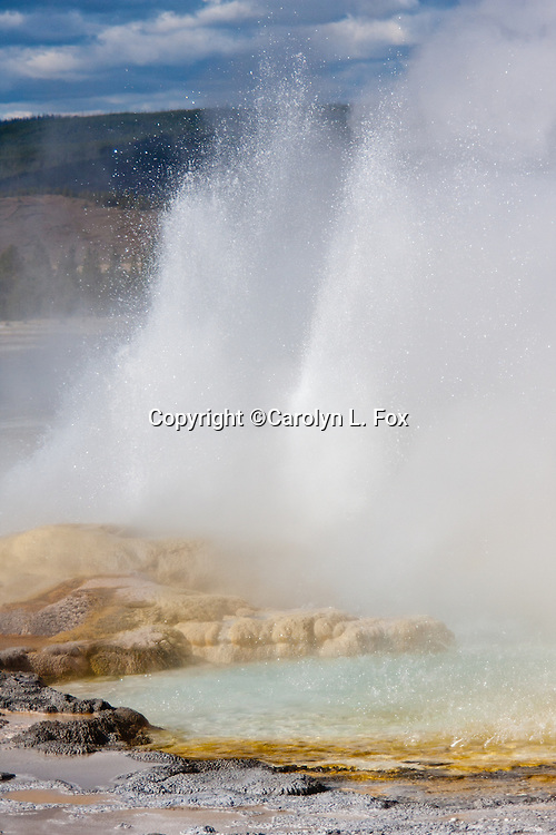 Steam and water pour out of geysers in Yellowstone National Park.