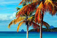 Famous Diamond Rock on the turquoise sea, with colorful palm tree foreground, in French La Martinique Island, Caribbean Windward Islands