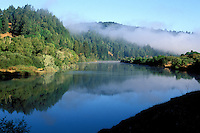 California, Russian River, Early morning mist