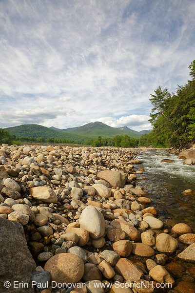 Big Coolidge Mountain (center) from along the East Branch of the Pemigewasset River, near Riverwalk Trail, in Lincoln, New Hampshire on a cloudy spring day.