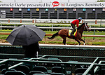 LOUISVILLE, KENTUCKY - MAY 04: State of Honor, owned by Conrad Farms and trained by Mark E. Casse, exercises in preparation for the Kentucky Derby at Churchill Downs on May 4, 2017 in Louisville, Kentucky. (Photo by Jon Durr/Eclipse Sportswire/Getty Images)