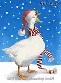 Ingrid, CHRISTMAS ANIMALS, WEIHNACHTEN TIERE, NAVIDAD ANIMALES,goose, paintings+++++,USISPROV40,#xa#