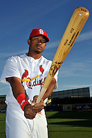 Mar 01, 2010; Jupiter, FL, USA; St. Louis Cardinals outfielder Daryl Jones (84) during  photoday at Roger Dean Stadium. Mandatory Credit: Tomasso De Rosa/ Four Seam Images