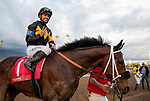 MAR 07: Umberto Rispoli at Santa Anita Park in Arcadia, California on March 7, 2020. Evers/Eclipse Sportswire/CSM