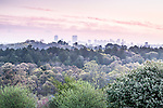 Sunrise view of the downtown skyline from Peters Hill at the Arnold Arboretum, Boston, Massachusetts, USA