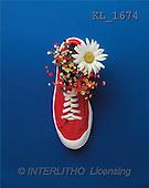 Interlitho, MODERN, photos, red shoe, marguerite(KL1674,#N#) moderno