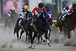 FUCHU,JAPAN-JANUARY 29: Kafuji Take #3,ridden by Yuichi Fukunaga,wins the Negishi Stakes at Tokyo Racecourse on January 29,2017 in Fuchu,Tokyo,Japan (Photo by Kaz Ishida/Eclipse Sportswire/Getty Images)