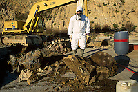 - illicit rubbish dump of toxic refusals discovered in Pitelli near La Spezia....- discarica abusiva di rifiuti tossici scoperta a Pitelli vicino a La Spezia........
