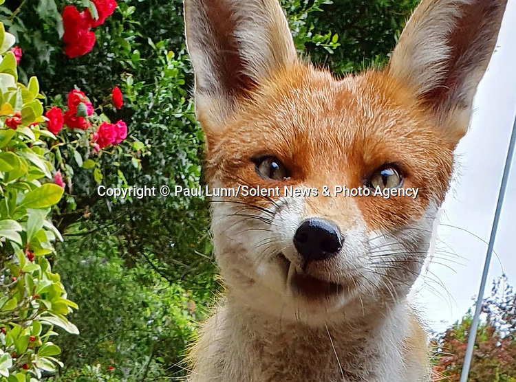 SUSPICIOUS MINDS<br />