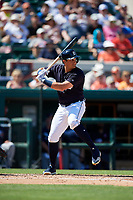 Detroit Tigers left fielder Mikie Mahtook (8) at bat during a Grapefruit League Spring Training game against the Atlanta Braves on March 2, 2019 at Publix Field at Joker Marchant Stadium in Lakeland, Florida.  Tigers defeated the Braves 7-4.  (Mike Janes/Four Seam Images)
