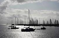 Nederland  Enkhuizen - 2019.  Jachthaven bij Enkhuizen.     Berlinda van Dam / Hollandse Hoogte