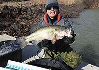 Lake Fort Smith is home to some lunker largemouth bass. Kody Rudolph shows a 7.6-pound largemouth that was caught in a net during the walleye study. Largemouth bass up to 10 pounds have been caught at the scenic lake. <br />(NWA Democrat-Gazette/Flip Putthoff)