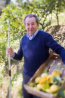 Europe/France/Provence-Alpes-Côte d'Azur/Alpes-Maritimes/Menton: La Citronneraie est située à flanc de la colline de l'Annonciade, berceau de Menton - Monsieur Mazet , arboriculteur