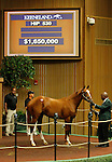 September 16, 2015: Hip 530 Tapit - Pure Clan colt consigned by Gainesway. Candice Chavez/ESW/CSM