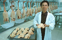 Chinese businessman, Chen Xiuhong, who owns a business that produces foie gras near Beihai, Guangxi. Foie Gras, the French delicacy, made from the liver of geese that have been force fed in now being produced by an enterprising Chinese businessman...PHOTO BY SINOPIX