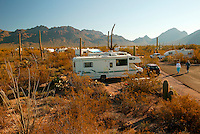 Gilbert Ray campground, Tucson Mountain County Park, near Saguaro National Park, Tucson, Arizona.