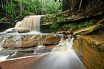 Gulik Falls, edge of southern plateau, Maliau Basin. Sabah's 'Lost World', Borneo.
