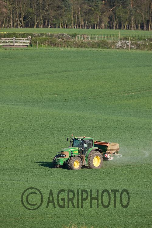 8.4.2011 John Deere tractor and spreader applying Nitrogen to Winter Wheat in Rutland.©Tim Scrivener 07850 303986