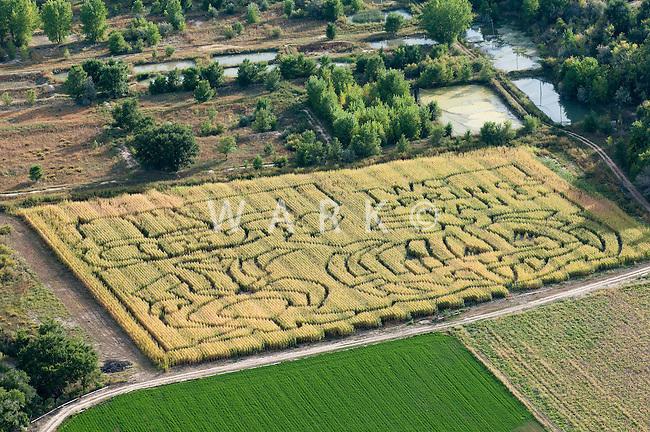 Corn maze. Pueblo County Colorado. Sept 2011
