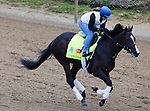 APRIL 30, 2015: Upstart, trained by Rick Violette Jr., exercises in preparation for the 141st Kentucky Oaks during morning workouts at Churchill Downs in Louisville, Kentucky. Ting Shen/ESW/Cal Sport Media