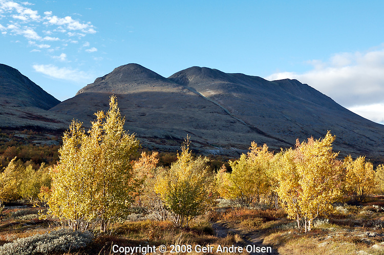 Fall in the Norwegian mountains, Rondane and Venabygdsfjell