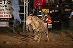 SEBRA - Gordonsville, VA - 8.8.2015 - Mutton Busting