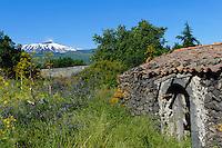 Blick auf Etna bei Linguaglossa, Sizilien, Italien , UNESCO-Weltnaturerbe