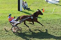 PAARDENSPORT: JOURE: 10-07- 2015, Nutsbaan, Hiltje Tjalsma (#6) uit Blauhûs wint met Banter Boy de Goudenswipe, ©foto Martin de Jong