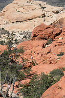 Red Rock Canyon, Nevada. Hikers Following the Trail to Calico Tanks.