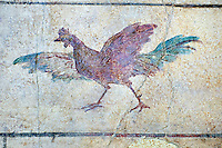 Roman Fresco of a chicken from The Large Columbarium in Villa Doria Panphilj, Rome. A columbarium is usually a type of tomb with walls lined by niches that hold urns containing the ashes of the dead.  Large columbaria were built in Rome between the end of the Republican Era and the Flavio Principality (second half of the first century AD).  Museo Nazionale Romano ( National Roman Museum), Rome, Italy.