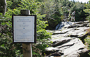 Alpine zone sign along the Ammonoosuc Ravine Trail during the summer months. Located in the White Mountains, New Hampshire USA.