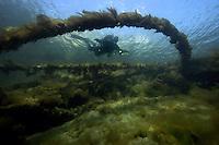 Underwater by Fredrik Naumann