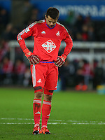 Lukasz Fabianski of Swansea City shows a look of dejection during the Barclays Premier League match between Swansea City and Leicester City played at The Liberty Stadium on 5th December 2015
