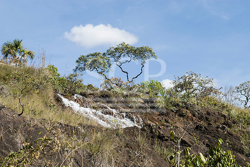 Brazil. Cerrados vegetation with water from a spring  cascading down rock formation.