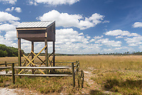 A bat house in Hopkins Prairie in Ocala National Forest in Florida.