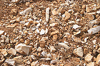 Domaine du Mas de Daumas Gassac. in Aniane. Languedoc. La Cerane plot. Terroir soil. France. Europe. Vineyard. Soil with stones rocks.
