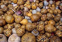 Peru, Pisac.  Painted Gourds for Sale as Souvenirs.