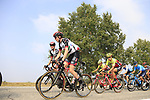 The peloton including Dan Martin (IRL) UAE Team Emirates during the 99th edition of Milan-Turin 2018, running 200km from Magenta Milan to Superga Basilica Turin, Italy. 10th October 2018.<br /> Picture: Eoin Clarke | Cyclefile<br /> <br /> <br /> All photos usage must carry mandatory copyright credit (© Cyclefile | Eoin Clarke)
